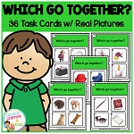Which Go Together? Task Cards ABA ~Digital Download~