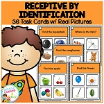 Receptive Identification 1 Task Cards ~Digital Download~