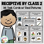 Receptive by Class 2 Task Cards ABA ~Digital Download~