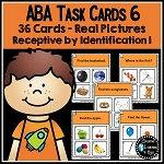 ABA Task Cards 6 Receptive Identification 1 ~Digital Download~