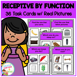 Receptive by Function Task Cards ~Digital Download~