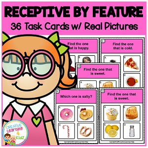 Receptive by Feature Task Cards ABA ~Digital Download~
