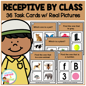 Receptive by Class Task Cards  ~Digital Download~